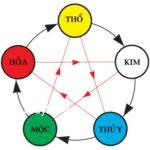 Học thuyết âm dương, ngũ hành- ứng dụng trong y học
